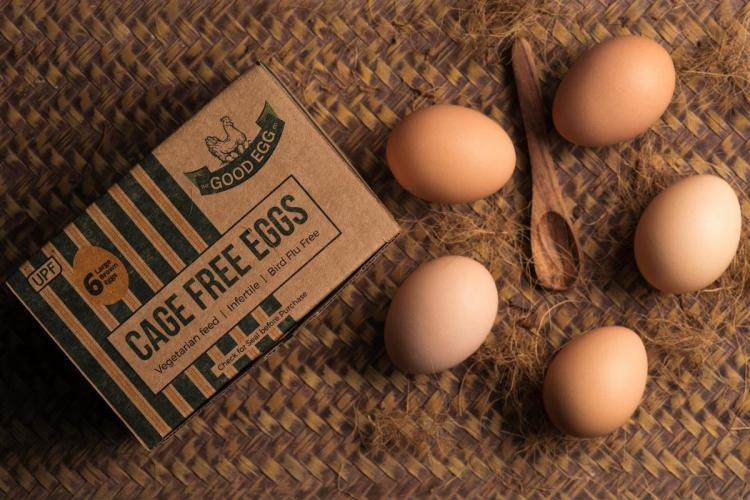 CARE FREE EGGS